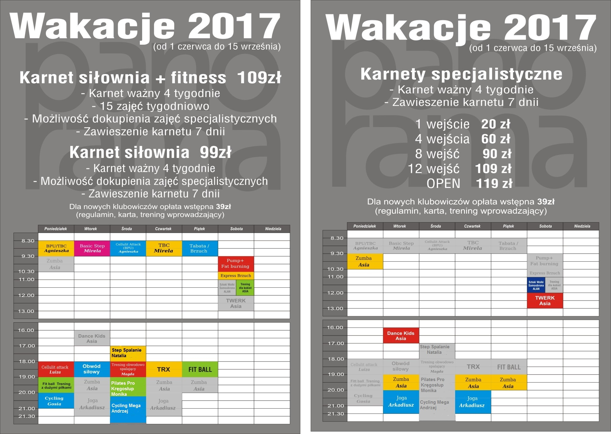 GRAFIK-WAKACJE 2017